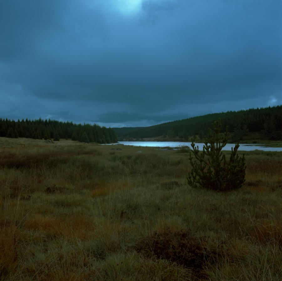 urban-nature-2014-marcocohen-04